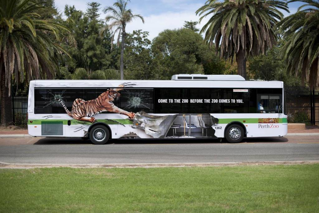 perth-zoo-bus-tiger-innovative-bus-wrap-design
