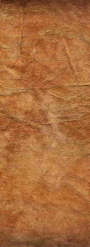 Leather sample substrate